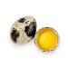 д-к яйце перепелине